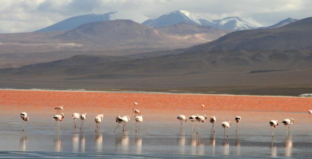 uyuni-salt-flats-tours-travel