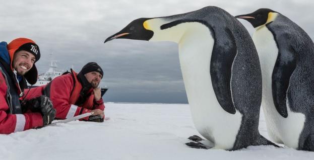 antarctica-tours-cruises-travel