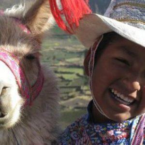 The Peruvian Journey