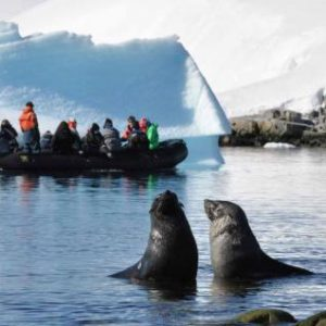 Best of Peru with Antarctica Cruise