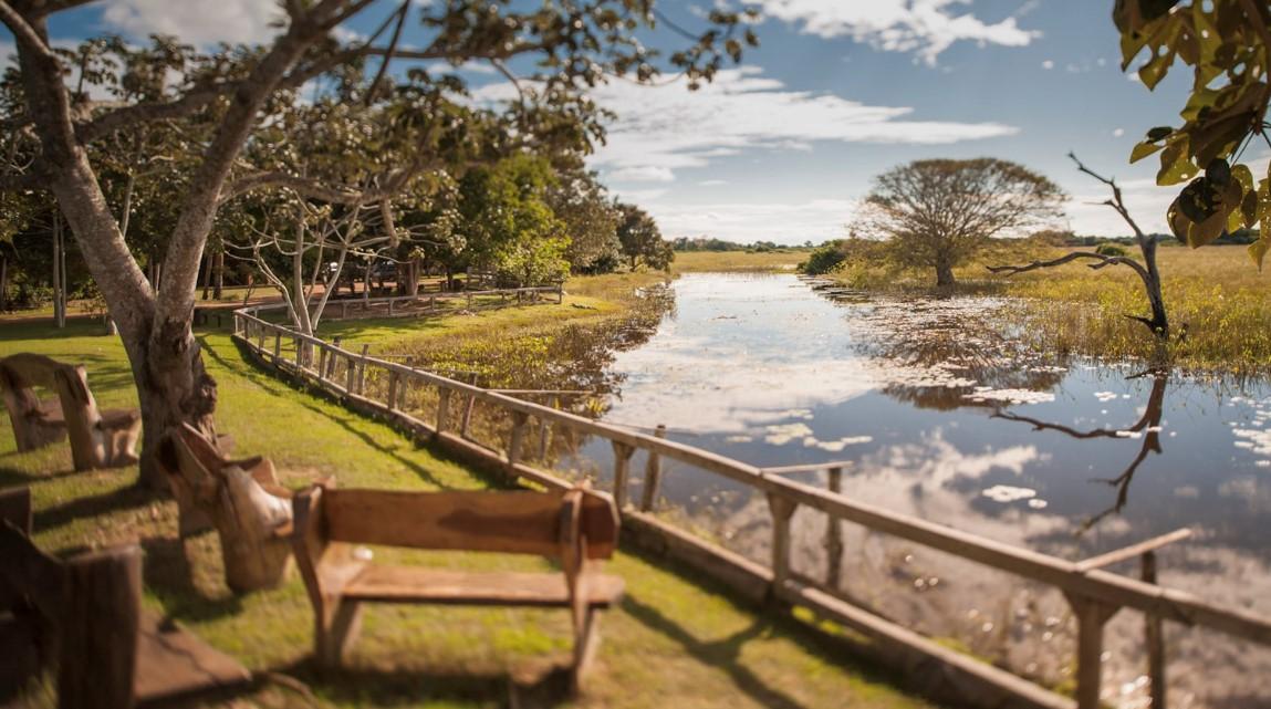 brazilpantanal-wetlands