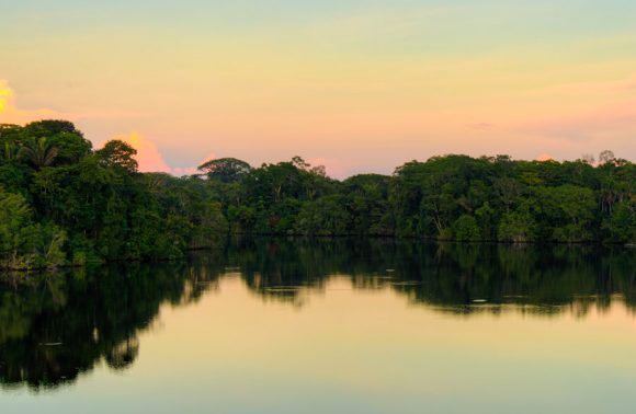 Sacha Lodge – Ecuador Amazon